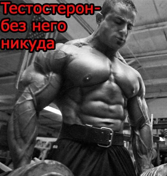 как-увеличить-уровень-тестостерона