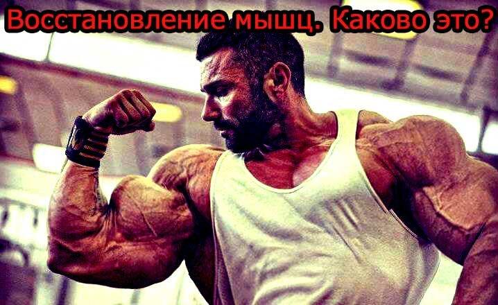Восстановление-мышц