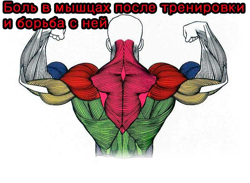 боль-в-мышцах