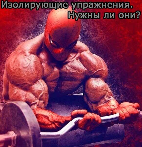 Изолирующие упражнения